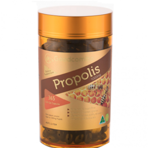 굿콤보 프로폴리스 1000mg 365정 [GOODCOMBO] PROPOLIS 1000MG 365CAPS