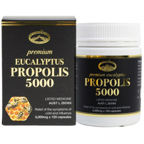 네이쳐스탑 프로폴리스 5000mg 120정, Nature's Top Propolis 5000mg 120Capsules